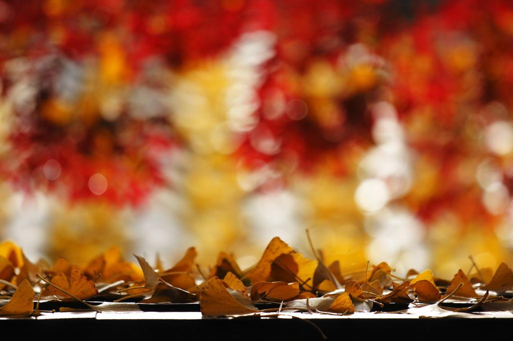 - 秋の色は  -