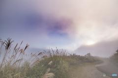霧のファンタジア