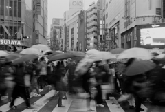 「Flow in the city」