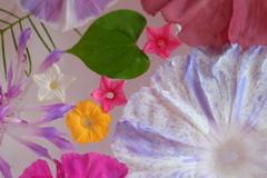 花便り - ★と❤のある水盤 -
