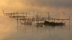 印旛沼・朝景 - 黄金色の霧 -