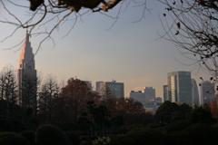 街の情景 - 淡い陽射しに照らされて -