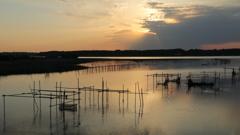 印旛沼・朝景 - シャンパンゴールドの朝 -