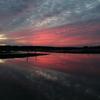 印旛沼・朝景 - 紅彩のクライマックス -