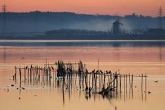 印旛沼・朝景 - 朝靄の風車と共に -