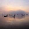印旛沼・朝景 - 幻霧の朝 -