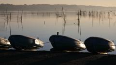 印旛沼・朝景 - 旭光に輝く小舟たち -