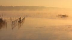 印旛沼・朝景 - 霧の中の助走 -