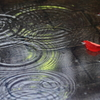花便り - 水溜りの南京櫨 -
