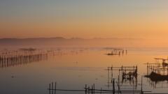 印旛沼・朝景 - 朝霧の中の喧噪 -