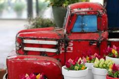 花便り - 小さなファンタジー世界 -