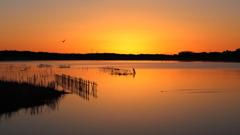 印旛沼・朝景 - 曙色に染まって -