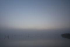 印旛沼・朝景 - 朦朧の夜明け -