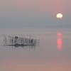 印旛沼・朝景 - 悠揚たる昇日 -