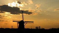 印旛沼・風車 - 初秋の再会 -