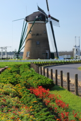 印旛沼・風車 - 夏花のおもてなし -