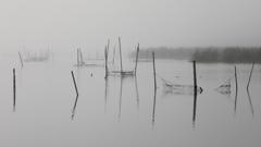 印旛沼・朝景 - 水墨の世界 -