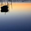 印旛沼・朝景 - 孤舟 -