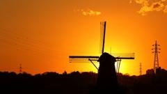印旛沼・風車 - 電線との共存 -