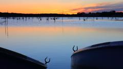 印旛沼・朝景 - 朝ぼらけの小舟 -