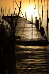 印旛沼・朝景 - 影のある桟橋 -