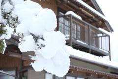 モリモリ雪