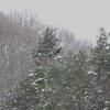雪山を飛ぶⅡ