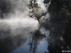 朝霧を羽織る