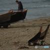 seasidechair