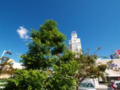 塔の見える風景