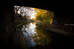 秋景 八幡堀