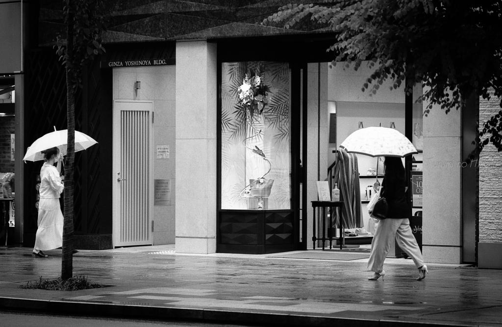 雨音のリズムで歩けば