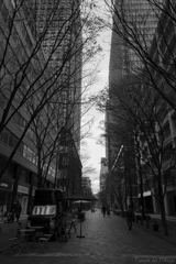 street scene 2017