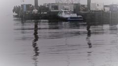 霧雨の港で見えるもの