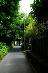 瑞泉寺への路