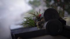 朝霧の真田庵