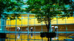 雨に映る街角