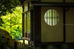 新緑と円窓と