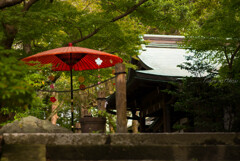 秋散策 鎌倉路