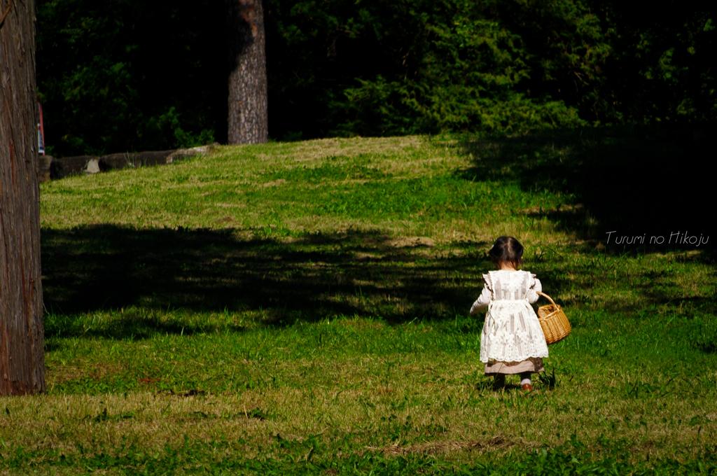 アリスの木の実拾い