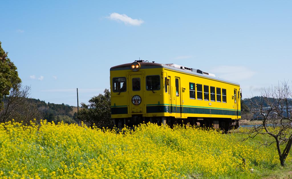Spring Railway