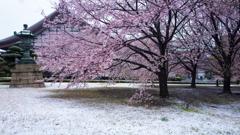雪景色 總持寺