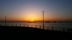 大黒埠頭は、朝まづめ