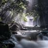 光芒の円原川