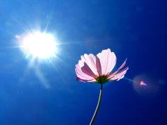 a light beam of sun