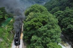渓谷鉄道の旅