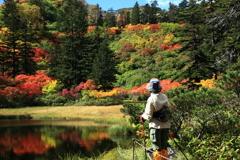高原温泉の紅葉