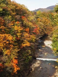 秋の定義山2020Ⅷ