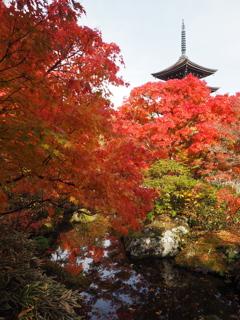 秋の定義山2020Ⅶ