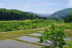 初夏の大石田